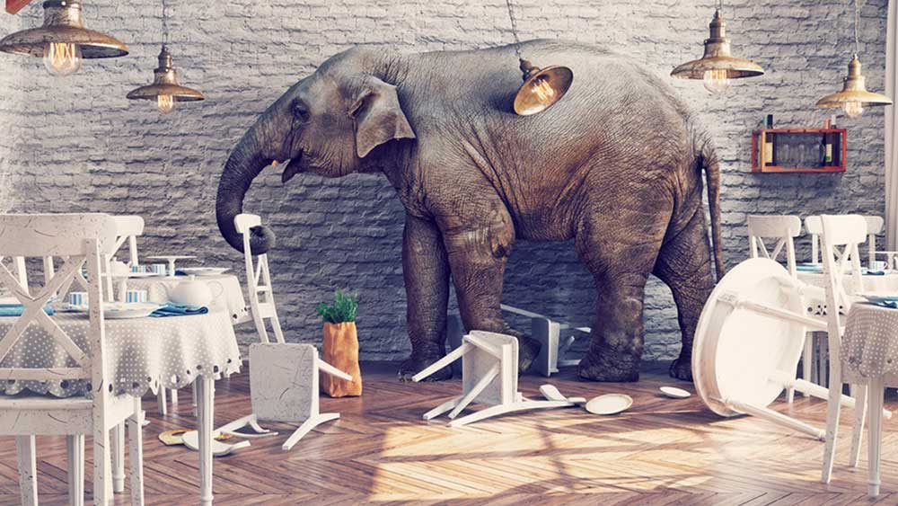 Whilst our old friend Dumbo may smash a few plates and knock over the furniture and generally be quite difficult to accommodate he won't actually mark your newly installed floor.